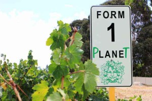 organic sparkling - Form one Planet