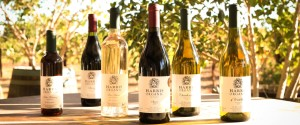 organic wine event - Harris Organic Wines