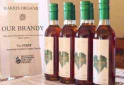 organic brandy